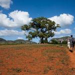 Nicht Afrika, auch nicht Australien - nein Kuba