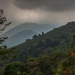Tropisch bewaldete Hänge und runde Nebelberge....