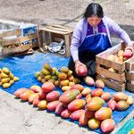....sowie köstliche Mangofrüchte.....