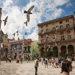....und Touristen kämpfen mit den Tauben um die besten Plätze....