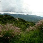 Die Gegend um Taxco ist wunderschön