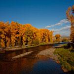 Traumhafter Indian Summer am noch kleinen Fluss