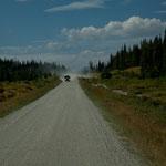 """""""dirt road"""" extrem staubig - wenn ein Holztransporter kommt sieht man nichts mehr"""