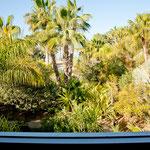 .....und Blick auf den tropischen Garten....