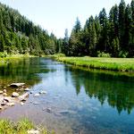 """der """"Truckee River"""" - der einzige Abfluss des """"Lake Tahoe"""""""