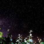 ...der Sternenhimmel hier ist einmalig - dank der klaren Luft...