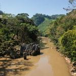 "....der ""Rio Cahabón"" war heute lehmig......"
