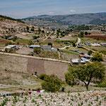 das Land wird intensiv bewirtschaftet - aber mit kleinsten Feldern