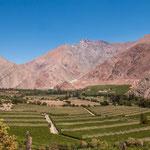 Das Elqui Tal ist berühmt für seine Weinberge in grandioser Umgebung...
