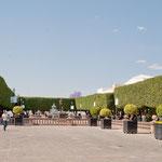 Plätze mit beschnittenen Lorbeerbäumen