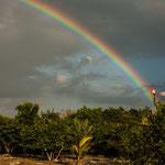 Ein toller Regenbogen am frühen Morgen....
