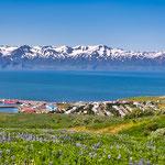 ....und den stahlblauen Atlantik-Fjord und das schöne Örtchen Husavik...