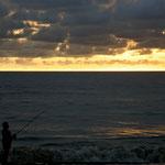.....nicht nur Pelikane fischen am Abend.....