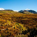 die hochalpine Vegetation in den schönsten Herbstfarben