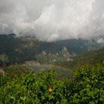 ....die Regenzeit ist besonders farbenprächtig.....