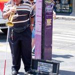 ein blinder Musikant der damit seinen Lebensunterhalt verdient