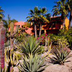 "Der tropische Garten des Hotels / Restaurants ""Posada La Poza"""