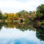 ...mitten in Manhatten der große und tolle Central Park...