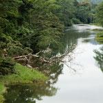 Einer von den ganz vielen Flüssen in Belize.....