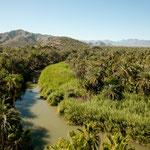 .....und der Rio Mulege