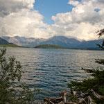 an diesem See gibt es viel Schwarz- und Grizzlybären