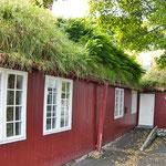 ...und die grasbedeckten Däfer - auch neue Häuser werden immer wieder damit ausgerüstet...