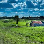 ...leider lebt die indigene Bevölkerung oft sehr arm am Rande der Strasse in solchen Behausungen...