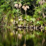 ....dieses tropische Paradies lag uns direkt gegenüber....