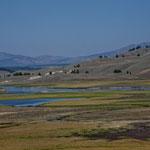 "das ""Lamar River Valley"" im Yellowstone Park....."