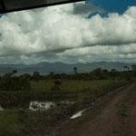 Hier war der Weg noch tadellos - aber der Graben links ist pures Moor....