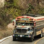 .....und die Busse sind einfach toll bemalt
