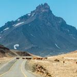 Hier fuhren wir über die Grenze nach Argentinien...