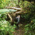 Bei unserer Tour ging es auch mal unter und über umgefallene Bäume....