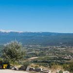 Und immer wieder sieht man den mächtigen Mt. Ventaux in weiter Ferne