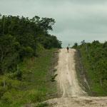 ....der Weg war völlig aufgeweicht und sehr steil....