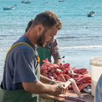 ...überall werden die frisch gefangenen Fische gesäubert und verkauft...