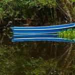 ....am Ufer beginnt undurchdringlicher Dschungel.....