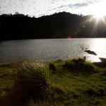 ....am frühen Morgen versprüht der See viel Schönheit.....
