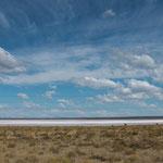 Ein weiterer Salzsee auf dem Weg nach Nihuil...