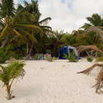 Die Zelte stehen direkt am Strand und tollen Palmen.....