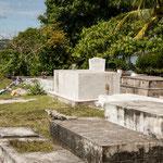 ....der Friedhof - das einzige Lebewesen ein Leguan.....