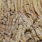 hier kann man Kletterer erkennen