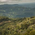 ...das Hochland von Panama ist auch bis über 3.000 m hoch