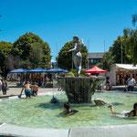 ...der schöne und große Stadtpark...