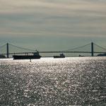 ...die sehr Brücke zwischen Brooklyn und Staten Island.