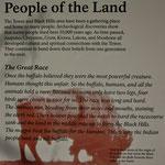 Eine schöne Geschichte über den Buffalo