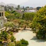.....und hat einen riesigen Garten mit allen heimischen Bäumen und Pflanzen