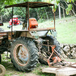 Der Besitzer scheint alte Traktoren zu sammeln....