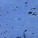 Blick zum Aufstieg Marteller Hütte (Marmotta)- Bergtol