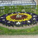 Die Blumenuhr ziert den Parkeingang